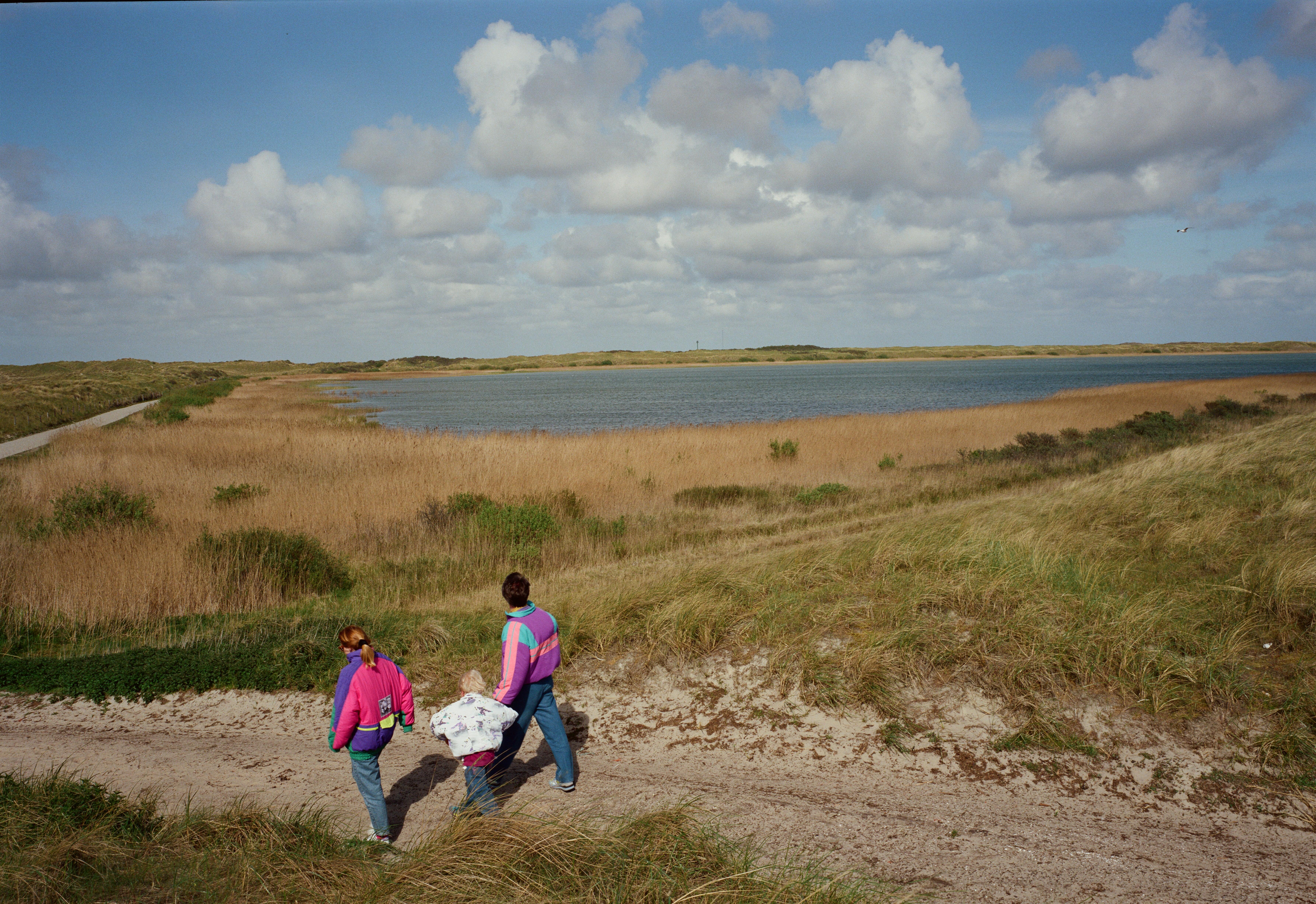 Natuurgebied Horspolders Texel. Foto: Henri Cormont, Beeldbank Rijkswaterstaat