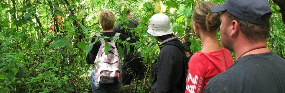 Jungletocht in getijdengebied