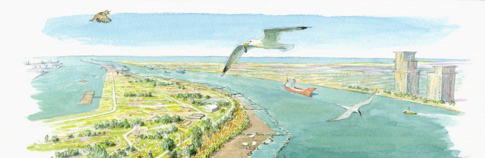 Groene Poort, afbeelding: Jeroen Helmer, ARK Natuurontwikkeling