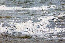 Making Waves, foto: Berend van Zeggeren